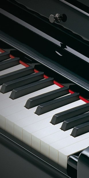toetsen digitale piano kopen