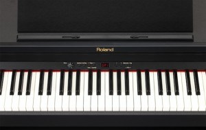 Roland RP301 piano keybed