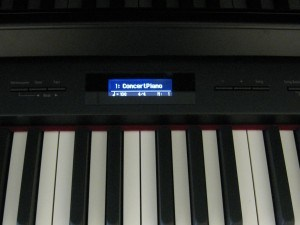 roland HP 508 piano display