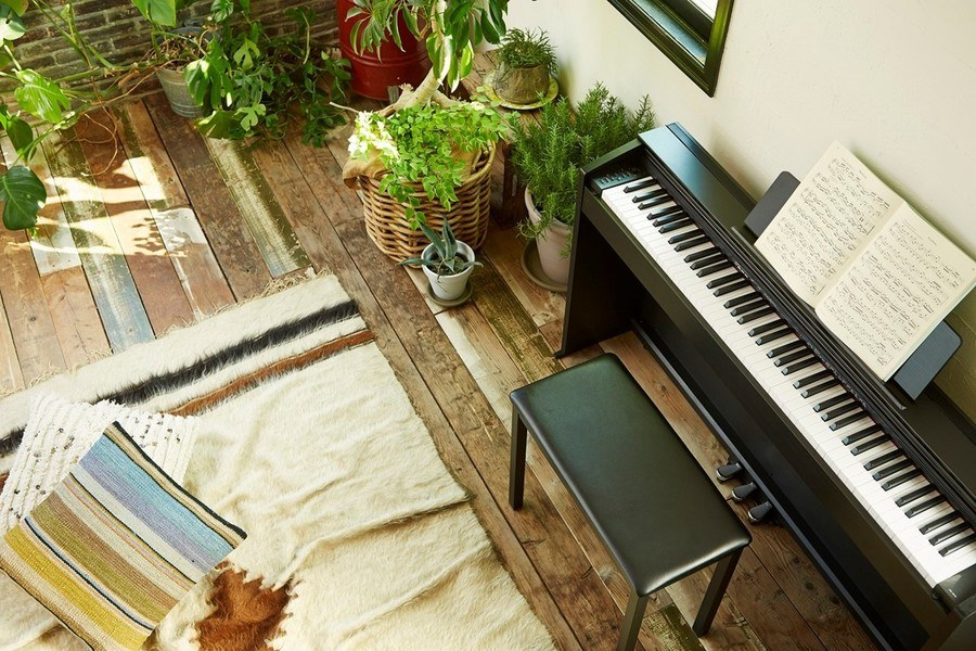Goedkope Casio PX-870 Review